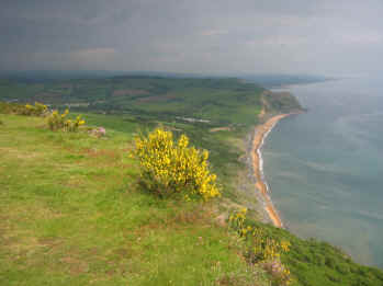 Veiw from Golden Cap
